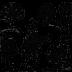 First Folio Cards logo